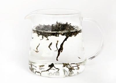 La teiera di vetro Babingtons
