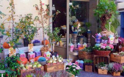 Blumen by Green Creations